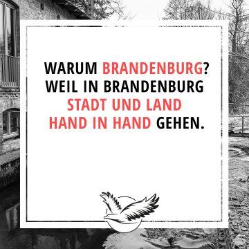 Stadt_undLand_Hand_inHand