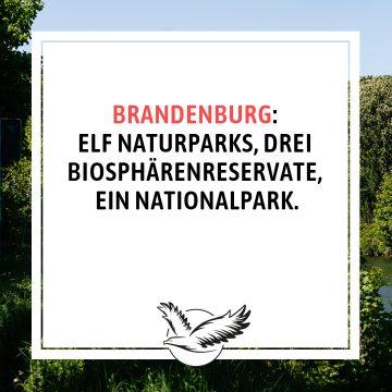 Natur_pur