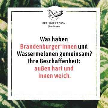 Brandenburger*innen_außen_hart_innen_weich