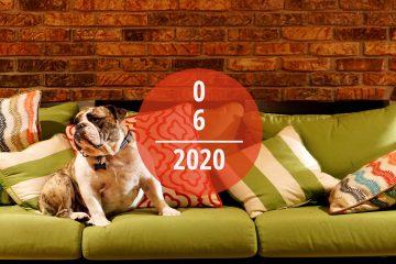 Veranstaltungstipps für Juni 2020