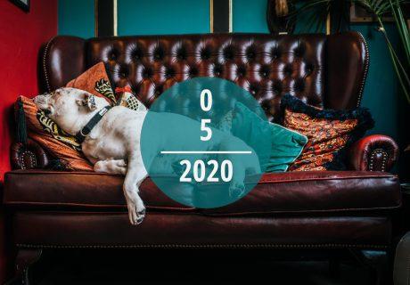 Veranstaltungstipps für Mai 2020