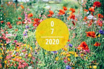 Veranstaltungstipps für Juli 2020