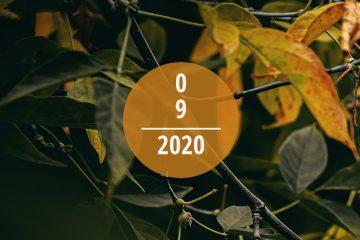 Veranstaltungstipps für September 2020
