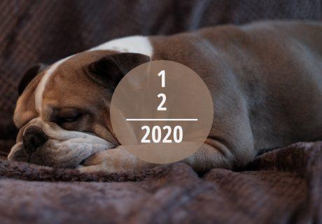 Veranstaltungstipps für Dezember 2020