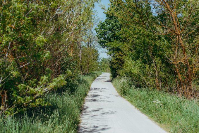 Wanderweg in Hobrechtsfelde